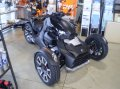 can-am RYKER900 Rally Edition